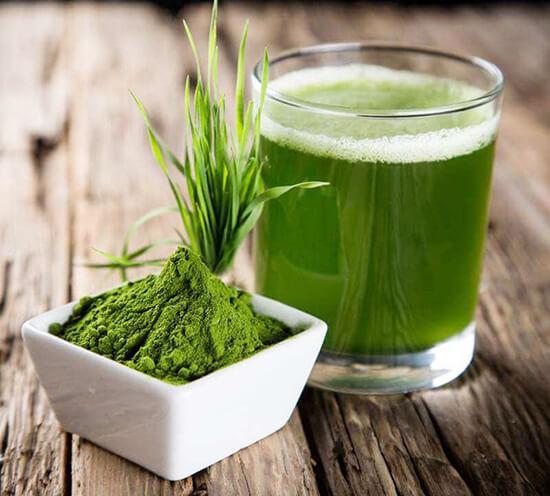 Lợi ích khi uống nước ép cỏ lúa mì mỗi ngày